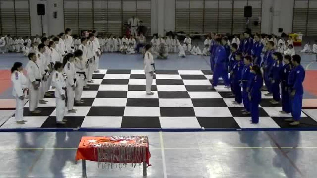 Chess Jiu Jitsu